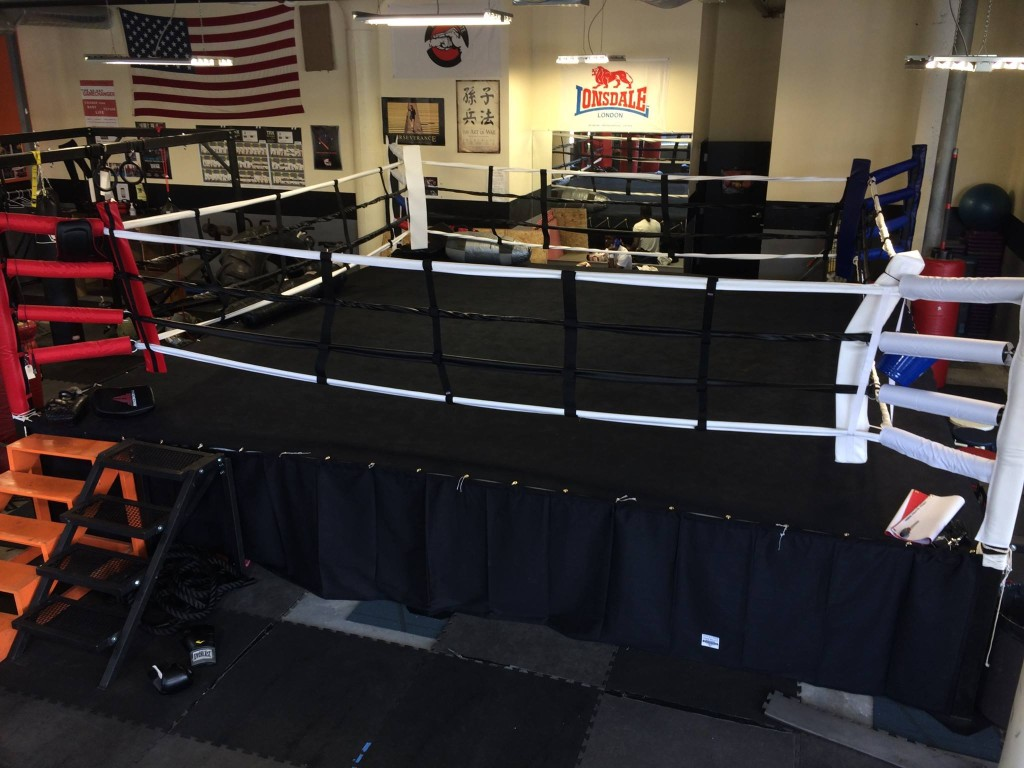 Picture of our boxing ring
